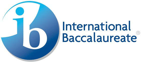 IB Important Subjects To Choose in IB Program