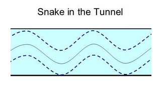 Snake in the tunnel